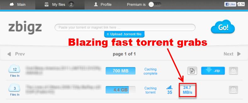 download-torrent-dengan-browser