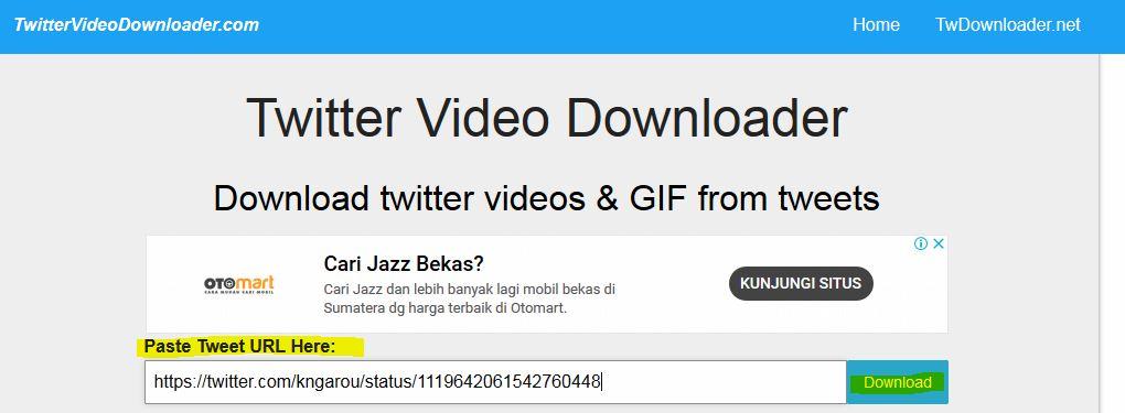 download video twitter via iphone