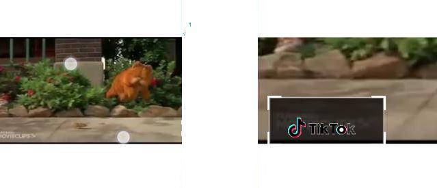Cara Menghilangkan Watermark Video Tiktok Di Hp Android Bacolah Com